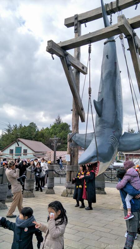 大白鯊拍照點